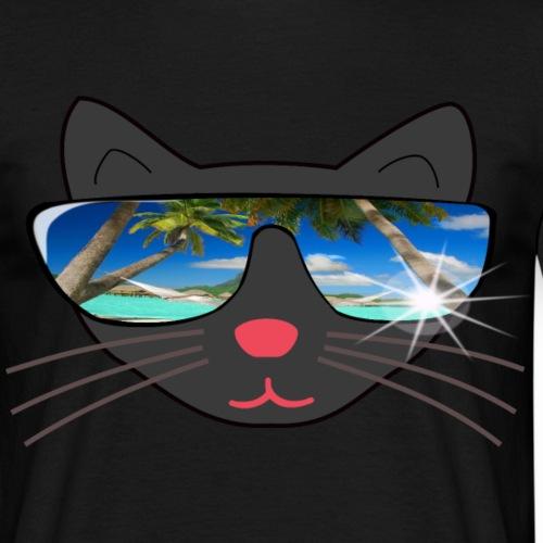 Katze mit Sonnenbrille