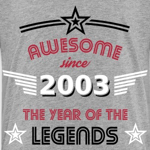 Awesome since 2003 T-Shirts - Kinder Premium T-Shirt
