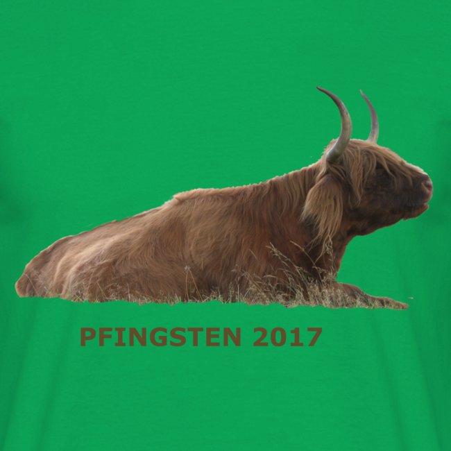Pfingsten 2017