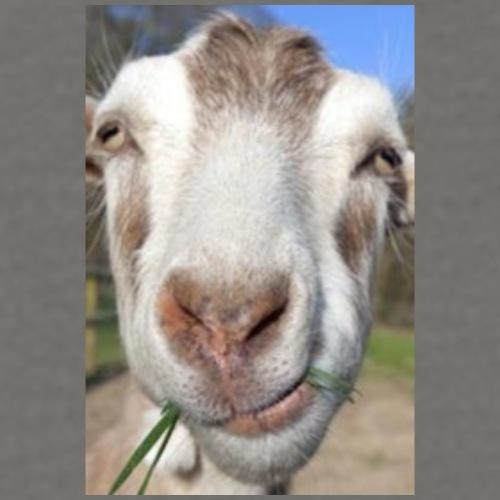 goat-dealbreakerDOTcom