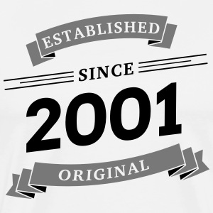 Established since 2001 - Männer Premium T-Shirt