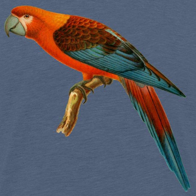 Papagaai teenager t-shirt