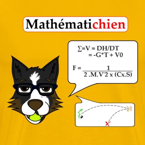 Mathématichien