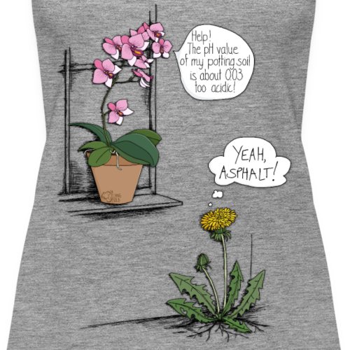 Löwenzahn & Orchidee
