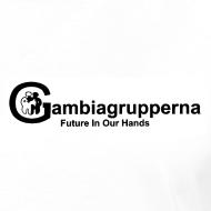 Motiv ~ Damtopp Gambiagrupperna