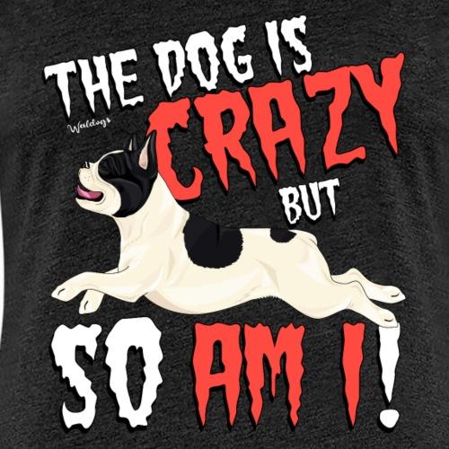 French Bulldog Crazy 2