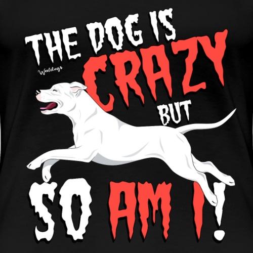 Dogo Argentino Crazy