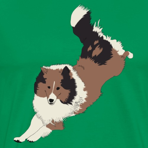 COLLEY SHELTIE