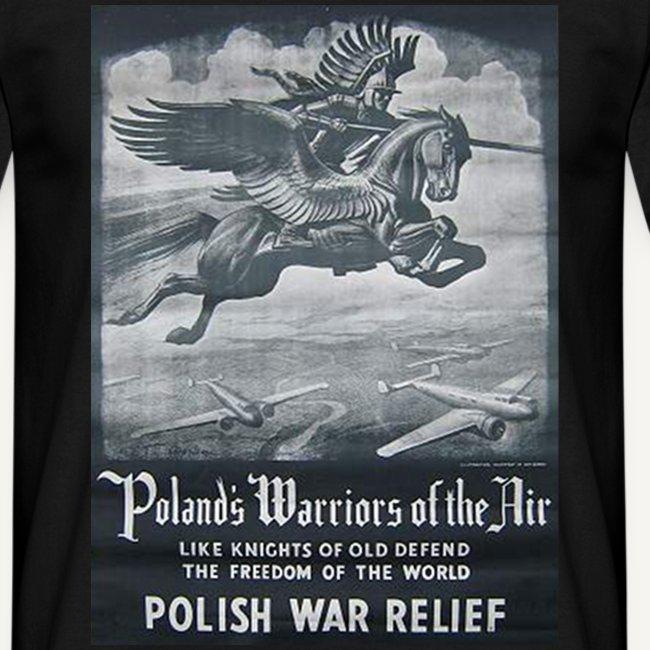 Polish wariors of the air (W. Benda)