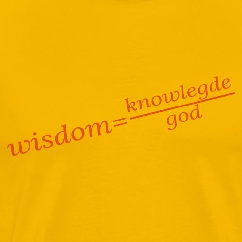 equation wisdom