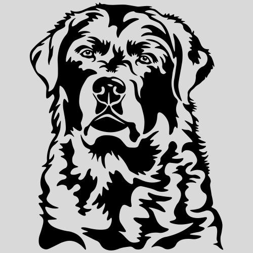 Labradorkopf *schwarz*