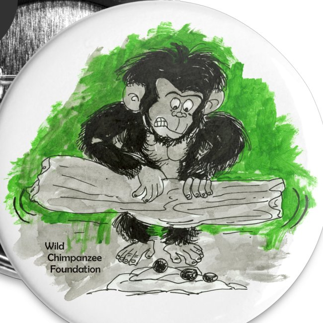 Chimpanzee nut cracking Buttons