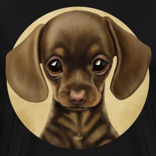süßes Tierchen Hund, Dackel, Welpe