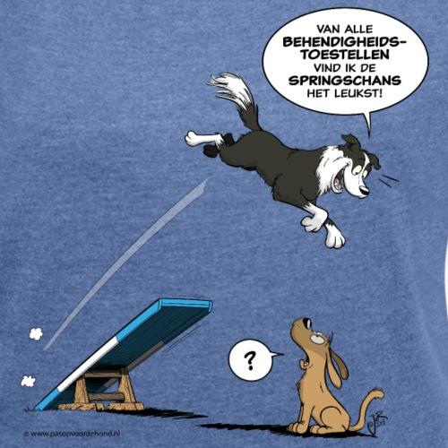 Border collie Behendigheid / veel te vlugge hond