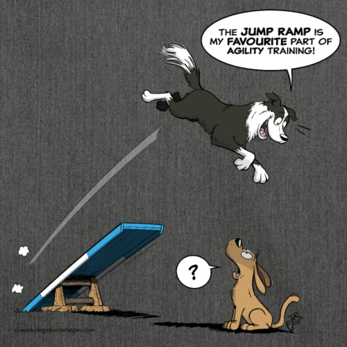 Border collie Agility / fast dog troubles