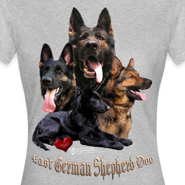 DDR-Schäferhunde