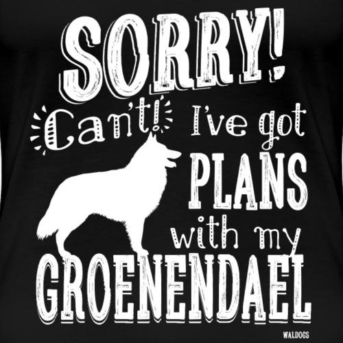 Plans Groenendael W
