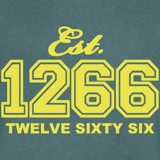 T-Shirt mit V-Ausschnitt (Größen: S - XXL)