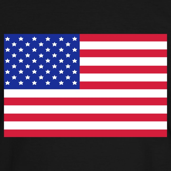 USA FLAG CONTRAST TEE