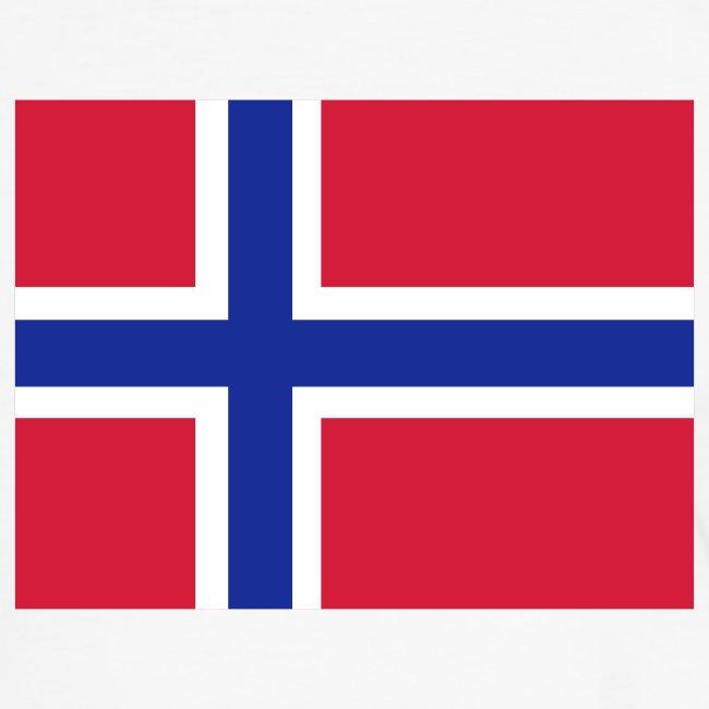 NORWAY FLAG CONTRAST TEE