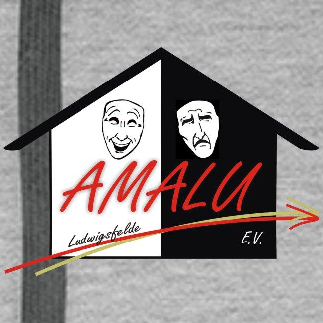 Hoodie Herren mit Amalu Logo und Schrift hinten (schwarz)