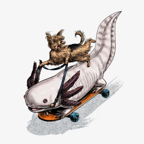 Yorkies and Axolotl skateboard rider