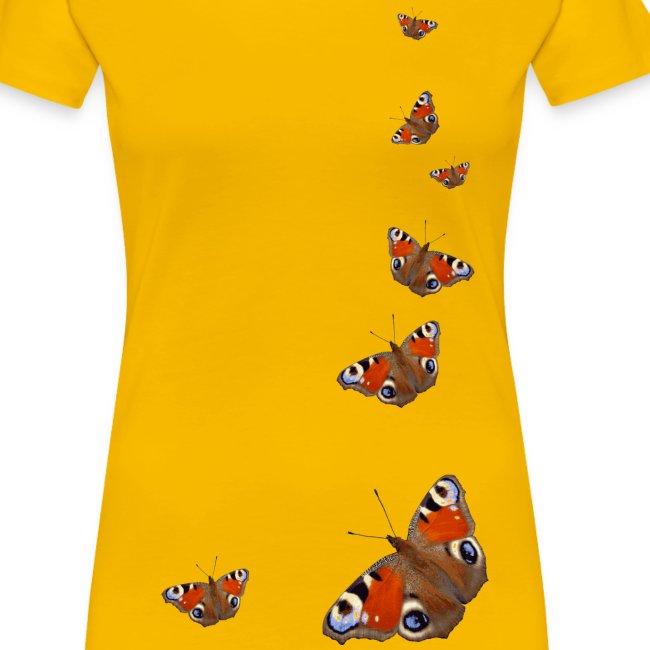 Schmetterling Flügel Tagpfauenauge Insekt Frühling