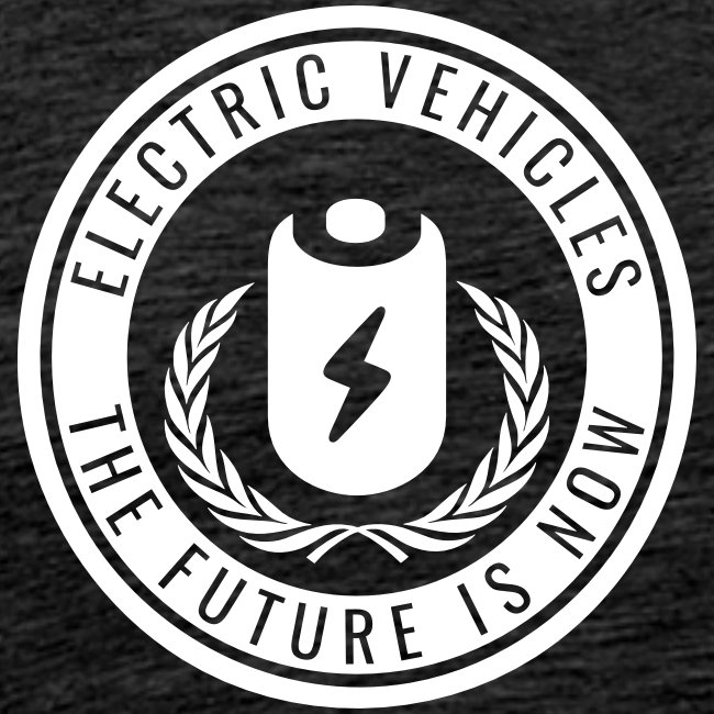 Electric Vehicles – The Future is Now