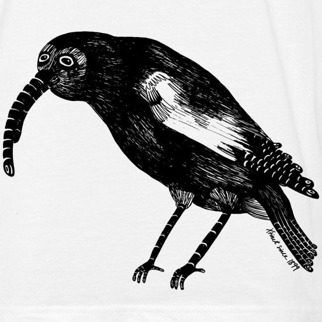 Sandra Barth Königskleidervogel