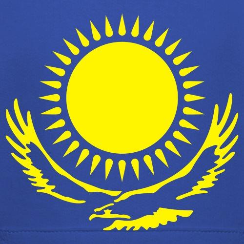 Элемент флага Казахстана