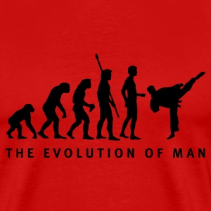 evolution_kampfsport_b T-shirts - Mannen Premium T-shirt