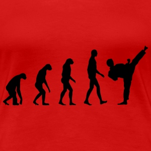 Evolution Fight  T-Shirts - Frauen Premium T-Shirt
