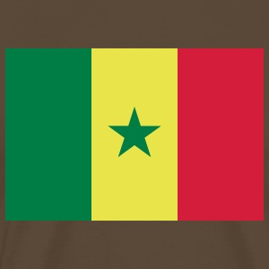 senegal flag T-shirts - Mannen Premium T-shirt