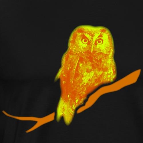 owl owlet bird night