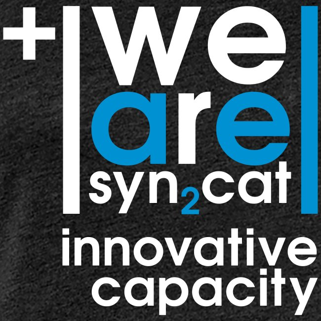 we are syn2cat II