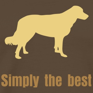 Simply the best - Männer Premium T-Shirt