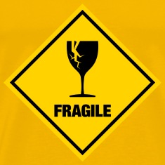 fragile - stag night shirt