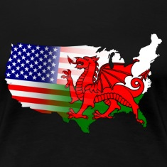 American Welsh Flag T-Shirts