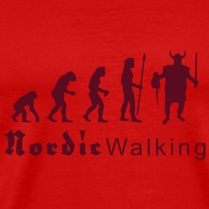 evolution_nordicwalking1 T-skjorter - Premium T-skjorte for menn