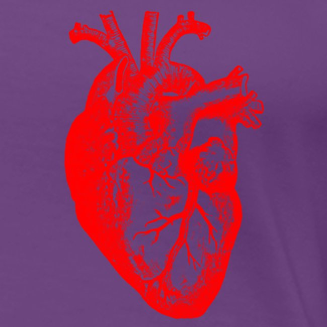 I love / I heart Herz Anatomy  T-Shirts