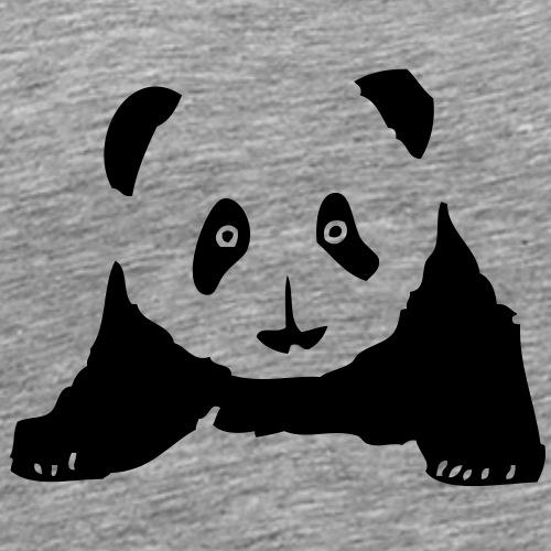 petit panda2