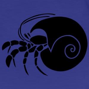 hermit crab crayfish cancer shrimp prawn lobster ocean snail conch seafood sea food shellfish