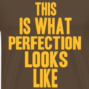 Perfection T-Shirts - Männer Premium T-Shirt