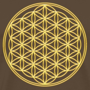 FEEL THE ENERGY, Flower of Life, Gold, Sacred Geometry, Protection Symbol, Harmony, Balance T-shirts - Mannen Premium T-shirt