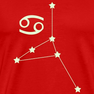 zodiac, constellation, cancer T-Shirts - Men's Premium T-Shirt