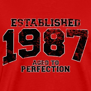 established 1987 - aged to perfection(uk) T-Shirts - Men's Premium T-Shirt