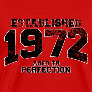 established 1972 - aged to perfection(fr) Tee shirts - T-shirt Premium Homme