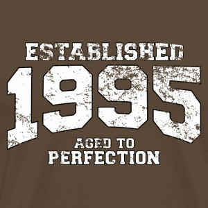 established 1995 - aged to perfection (nl) T-shirts - Mannen Premium T-shirt