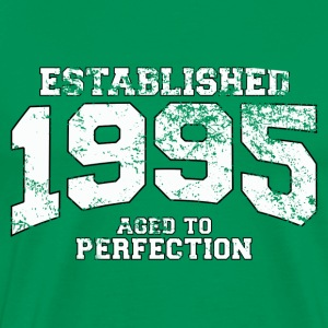 Geburtstag - established 1995 - aged to perfection - Männer Premium T-Shirt