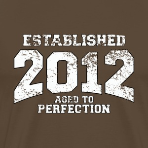 established  - aged to perfection (sv) T-shirts - Premium-T-shirt herr